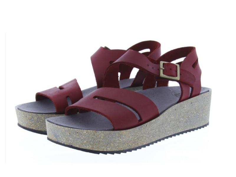 Loints Shoes Review