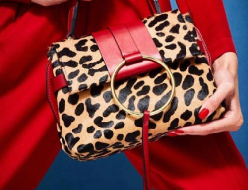 —————Go wild with Leopard Prints—————