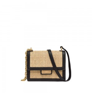 Gianni Chiarini Teresa Leather And Straw Chain Crossbody